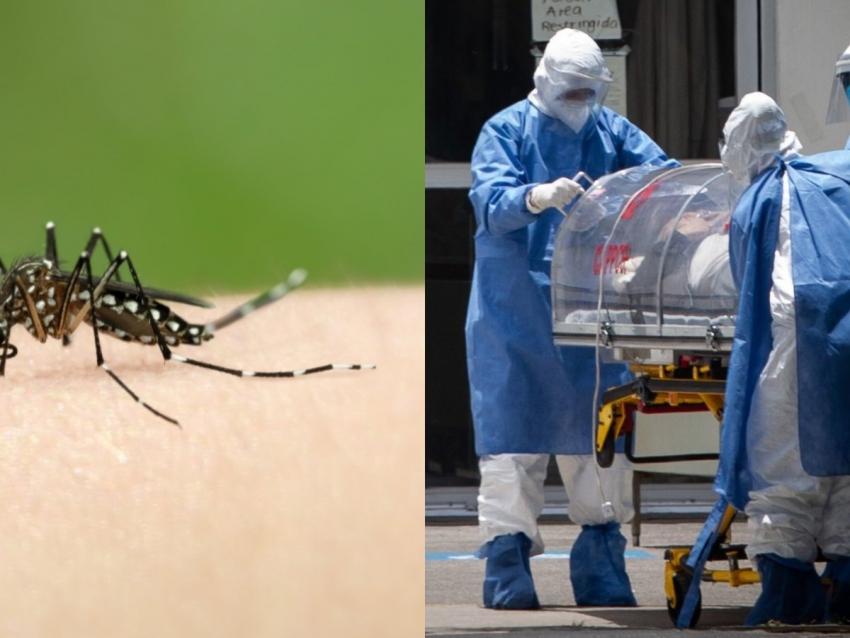 Un repelente para insectos puede matar al coronavirus, según un estudio
